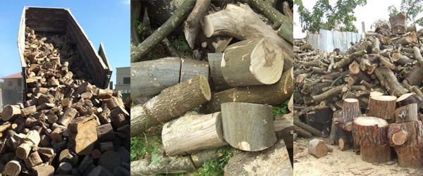עצים יבשים להסקה